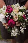 Wedding Flowers Gallery - Page 24 : Editors Pick : Bouquets : Brides