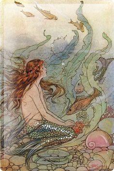 Tin Sign Poster Drawing Mermaid seawater dream fish shellfish seaweed flower hair band 20x30 cm Large Metal Wall Decoration Vintage Retro Classic Plaque