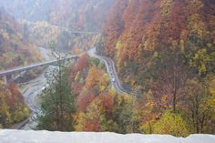 Autumn colors- Transfagarasan - Romania