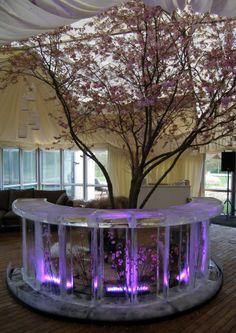 Blossom Circular Ice Bar