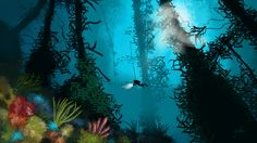 kelp forest - Google 검색