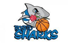 Roseto Sharks Inizia ufficialmente la stagione 2016/2017