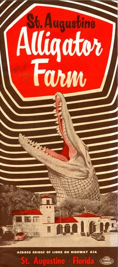 Art Poster: Florida St Augustine Aligator Farm 1950 Vintage Poster Art Print Retro Travel - The Zedign House - Store Vintage Florida, Old Florida, Florida Vacation, Visit Florida, Vintage Ephemera, Vintage Ads, Vintage Paper, Retro, Travel Brochure