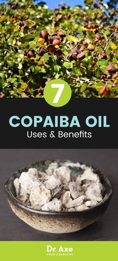 What are the benefits of copaiba oil? Possible copaiba essential oil uses include its ability to act as a natural anti-inflammatory, neuroprotecter and pain helper.