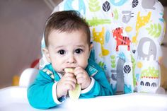 If baby has mastered purees and is ready to try table foods, offer him some of these great finger foods.
