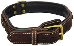 Dean and Tyler DEANS LEGEND Leather Dog Collar with Black Nappa Lining and Brass Hardware  Brown  Size 26 by 112  Fits Neck 24 to 28 -- More info could be found at the image url.