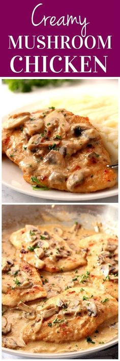 Creamy Mushroom Garlic Chicken Recipe - juicy chicken in creamy. Creamy Mushroom Garlic Chicken Recipe - juicy chicken in creamy garlic mushroom sauce served with mashed potatoes or pasta for a quick and delicious dinner! Chicken Recipes Juicy, Pasta Recipes, Dinner Recipes, Cooking Recipes, Casserole Recipes, Flour Recipes, Recipies, Bread Recipes, Shrimp Recipes