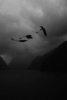 Rabía y Aspiraciònes - Shadows of Death
