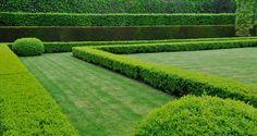 Formal Hedges in rows Design by Erwan Tymen