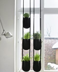 Urban Garden Bag Flowerpot - maybe I should hang these rather than window coverings....