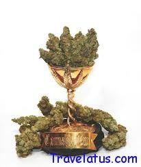 "The International Festival of Cannabis (""Cannabis Cup Awards"")"