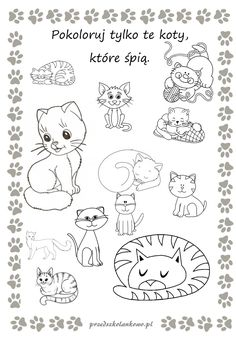 Dog Food Bowls, Studyblr, Pre School, Preschool Activities, Kids Learning, Growing Up, Kindergarten, Crafts For Kids, Lily