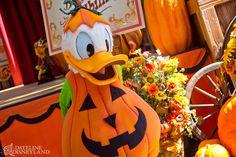 Pumpkin Donald :-) gotta love halloween at disneyland