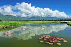 美麗的花東縱谷!Beautiful Taiwan!