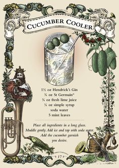 The Hendrick's Cucumber Cooler - my signature drink -- minus the mint Craft Cocktails, Summer Cocktails, Cocktail Drinks, Cocktail Recipes, Alcoholic Drinks, Beverages, Drink Recipes, Cocktail Book, Bar Drinks