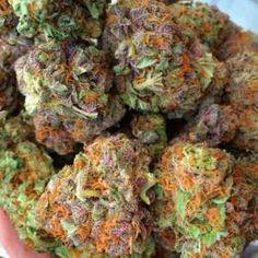 Buy OG-kush in Bulk - King Flavours Cannabis Vape, Cannabis Seeds For Sale, Cannabis Seeds Online, Medical Cannabis, Growing Marijuana Indoor, Marijuana Plants, Cannabis Growing, Cannabis Plant, Weed
