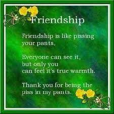 Friendship - quote