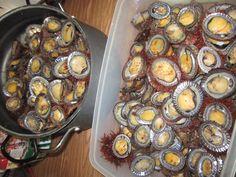 opihis HAWAIIAN STYLE FOOD!