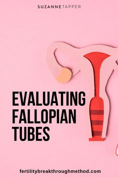 Checking fallopian tubes can help natural conception. Blocked Fallopian Tubes, Conception, Getting Pregnant, Natural Medicine, Acupuncture, Fertility, Improve Yourself, Pregnancy, Health