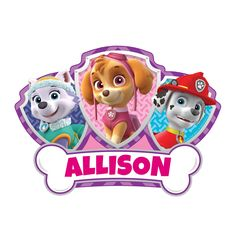 Paw Patrol Skye and Pups Easy-Move Canvas Decal | Tv's Toy Box
