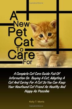A New Pet Cat To Care For: A Complete Cat Care « Library User Group