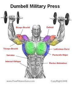 dumbell military press