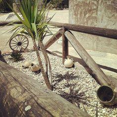 #decoración exterior #jardín #garden #naturaleza #nature #palmeras #casa #homegarden #genialjardin #creatividad @jennilisi