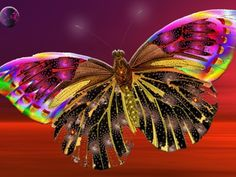 colorful butterfly.. kindof uplifting yea?