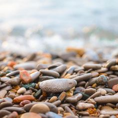 Often mistaken for Michigan's state stone, the Petoskey Stone, Charlevoix Stones are comprised of smaller, daintier honeycomb patterns that… Hiking Wisconsin, Camping Wallpaper, Petoskey Michigan, Camping World, Rv Camping, Petoskey Stone, Honeycomb Pattern, Northern Michigan, Great Lakes