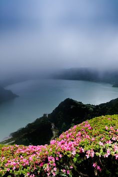 Mist and mistery in the Azores, Portugal - Lagoa das Furnas. Places Around The World, Oh The Places You'll Go, Places To Travel, Places To Visit, Around The Worlds, Azores Portugal, Spain And Portugal, Portugal Travel, Flower Carpet
