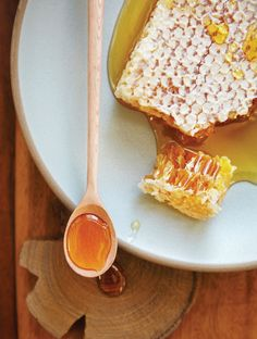 Honey helps support a healthy immune system and can help fight respiratory infections. Top Antibacterial Herbs and Food for Preventing Infection
