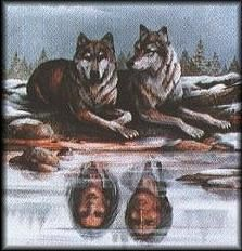Image detail for -THE COLORS OF THE WOLVES - THE FEDERATION OF LIGHT