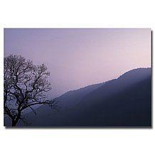 "Philippe Sainte-Laudy ""Purple Hours"" Print"