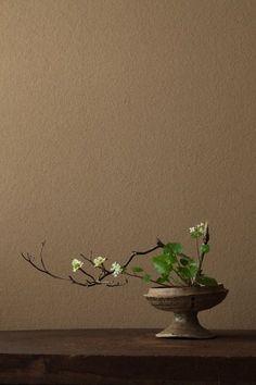Ikebana by Toshiro Kawase, Japan Ikebana Arrangements, Ikebana Flower Arrangement, Modern Flower Arrangements, Flower Vases, Exotic Flowers, Purple Flowers, Paper Flowers, Beautiful Flowers, Arte Floral