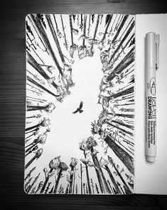 Here's a unique #penandink #nature #sketch by Kenny Eicher (@sketchy_mcgee) of an owl soaring above the treetops. A flying owl would make for an interesting illustration but drawing this scene from the viewpoint of a grounded observer (as Kenny has) lifts this inked piece to new heights. (Pun not intended... it's just... appropriate.) The perspective is almost hopeful. The forest could represent the mundane day-to-day business of life---never changing every tree trunk is essentially the same…