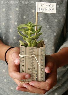 Ruler Succulent Planter - Back to School Teacher Gift