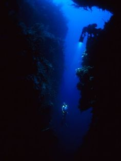#Diving Devil�s Hole, Cuba    Travel Cuba multicityworldtravel.com We cover the world over 220 countries, 26 languages and 120 currencies Hotel and Flight deals.guarantee the best price