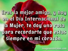 356 Best Frases Images Spanish Quotes Friends Forever Friend Quotes