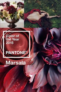 Pantone 2015 color of the year - MARSALA! I am loving this. Pantone 2015, Pantone Colors 2015, Color Trends, Color Combos, Color Schemes, Color Borgoña, Jolie Photo, Color Of The Year, Color Inspiration