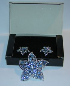 Sarah Coventry Star Fire Pin and Earring Set    $60 USD  is a book piece