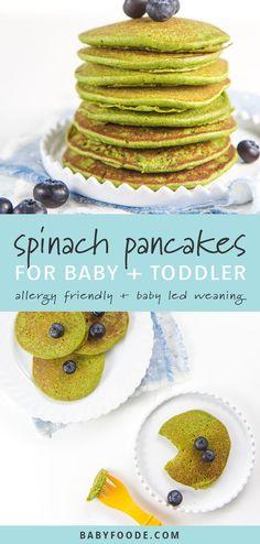 Easy Blender spinach pancakes for baby + toddler (allergic-Easy Blender Spinatpfannkuchen für Baby + Kleinkind (allergikerfreundlich!) Easy Blender spinach pancakes for baby + toddler (allergy-friendly! Spinach Pancakes, Baby Pancakes, Pancakes Easy, Toddler Meals, Kids Meals, Toddler Food, Toddler Recipes, Spinach Recipe For Toddler, Simple Recipes For Kids