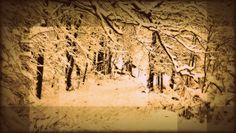#DuvidaCruel: Qual a diferença entre neve e geada? | Por @João Pinheiro. Por não ocorrerem com tanta frequência no Brasil, pouco sabemos sobre esse assunto, mas você conseguiria dizer a diferença entre neve e geada? Pois o Curioso e Cia. traz a resposta pra outra #DúvidaCruel! http://curiosocia.blogspot.com.br/2014/05/qual-diferenca-entre-neve-e-geada.html