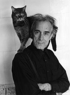 a cat using Swedish poet Karl Werner Aspenström as a vantage point.