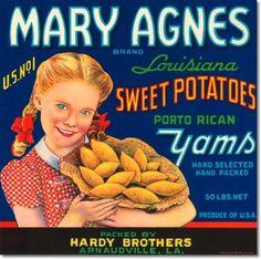Vintage sweet potato label