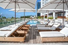 1 Hotel & Homes Pool, Miami Beach Luxury Hotel, 1 Hotel, Florida, Hospitality, EDSA, Landscape Architecture, 2015, Green. LEED Certified, Amenities, Rooftop Pool, Largest Pool, Organic Materials, Re purposed materials