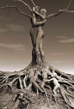 Roots of life!
