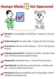 Human Meds Vet Approved (This is a nice list, but I am going to still ask my vet if these medications are okay for our babies, and you should too for your pets--medications can be cause very different side affects for dogs versus cats, different breeds, and even individual pets)