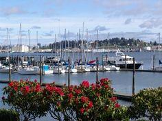 Port Orchard, WA - Washington