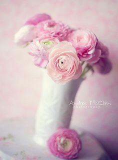 Pretty pinks!!