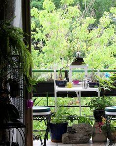 Attila's Budapest Abode — Small Cool